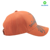 Printing and 3D embroidery Cotton Baseball Cap