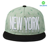 Wholesale 3D embroidery 6 panels Flat Bill Cap