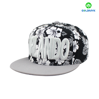 Six panel printing snapback cap with 3D embroidery